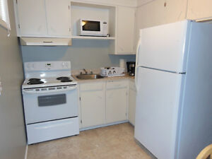 Comfortable 1 bedroom apartment St. John's Newfoundland image 5