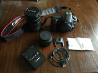 Canon EOS 60D, 2 Lens and Accessories