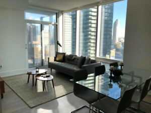 Room in Luxury Furnished Downtown Condo (2 bed 2 bath)