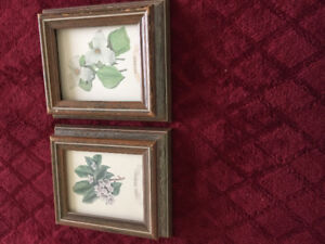 Picture Frames - various sizes.