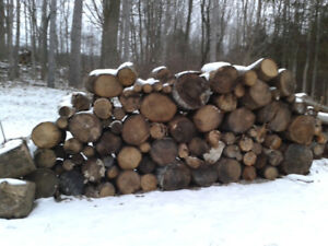 $50 Seasoned Firewood, get it before there's too much snow...