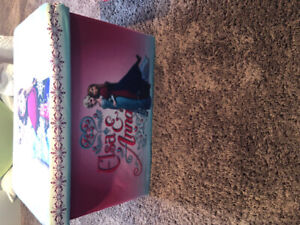 Kids storage units- frozen and cars