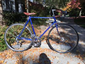 Vintage Nishiki Road Bike