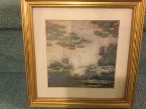 Waterlily Prints