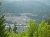 Sicamous    Great Building Site   $ 249,900