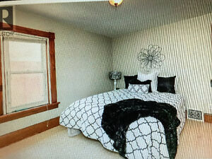 1 Bedroom apartment for rent -  Top floor of two storey house Cambridge Kitchener Area image 3