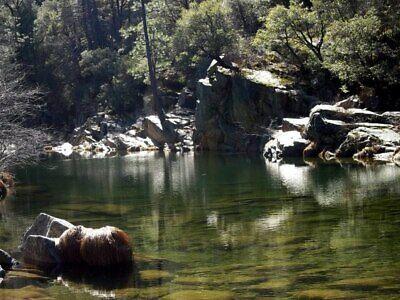 RARE Golden Quartz Gold Mining Claim Nevada County CA Famous South Yuba River!!!