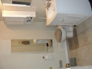 1 Bedroom Walkout Apartment Hespler - FInal Showing Weds Cambridge Kitchener Area image 3