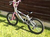 Zinc ice 20 inch BMX bike-Girls