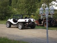 a vendre dune   buggy 1974