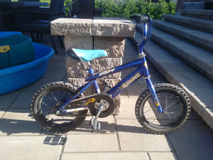 Blue Bicycle for Young boys