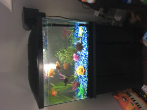 20 Gallon Tank with Stand and Fish