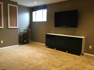 Modern Basement Suite Available in Coventry Hills!