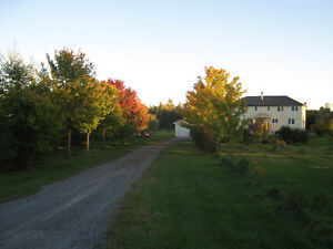 Peaceful Country Living in South Stormont Ontario on 5.95 Acres West Island Greater Montréal image 1
