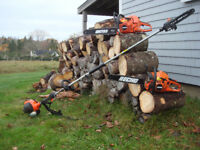 Tree removal/Cutting/Pruning/ Branch removal/Hedge trimming