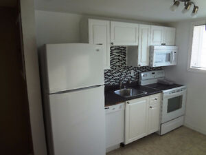 Recently Renovated, Non-Smoking Spacious 2-Bedroom for July 1