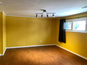 1 bedroom walk-out basement apartment for rent
