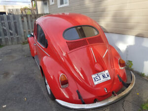 1974 super Beetle Oval