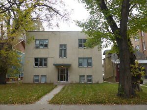 Large one bedroom apartment in excellent downtown location.