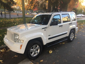 EXCELLENT CONDITION & VALUE - Vehicle for Sale-2010 Jeep Liberty