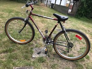 favorite this postMountain Bike - $100