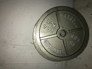 Olympic bar sized weights