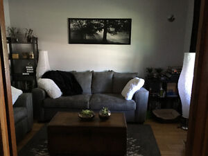 Female roommate wanted to sublet room in downtown house