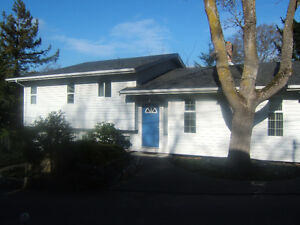 Available July 1, 3 bedroom 2 bath split level house in Maplewoo