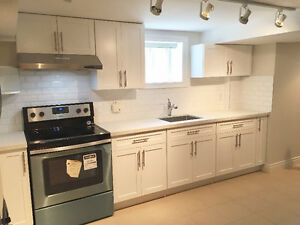 NEW ONE BEDROOM BASEMENT APARTMENT (BATHURST AND WILSON)