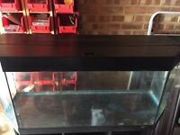Juwel 250L Aquarium Fish Tank with Stand and lights