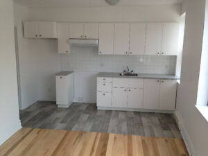 Renovated Two bedrooms Sherbrooke Vendome NDG Westmount
