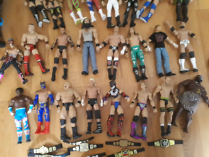 WWE Wrestlers and Ring.