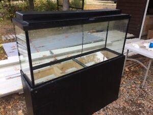 55 gallon fish tank with accessories