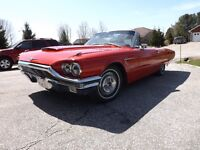 Convertible, Coupe, Sedan, Show Cars Available