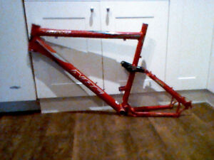 2005 Giant NRS