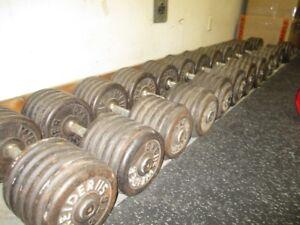 Dumbells weider  90 a 115