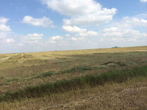 SASKATCHEWAN PASTURE AND HAY LAND 5% RETURN Regina Regina Area image 2