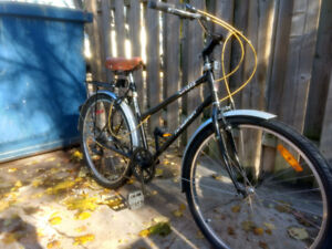Raleigh Oasis Bicycle