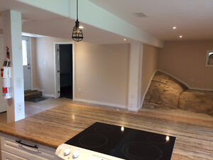 $1150/month - Clean and Newly Renovated Two Bedroom Apartment