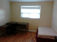 $500 ONE FURNISHED BEDROOM ALL INCLUSIVE FOR RENT (WESTON/FINCH)