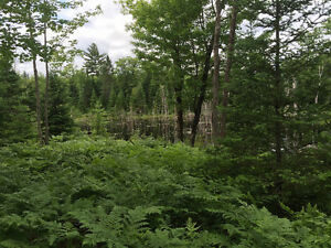 75 acres