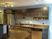 2 BR Executive Fully furnished all inclusive