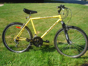 RALEIGH STRONGBOW MTB
