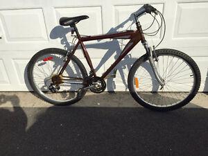Nice Dependable Mountain Bike