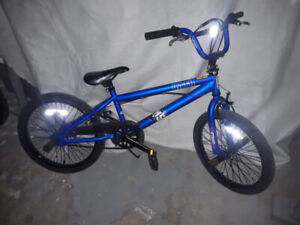 Boys Blue Sims BMX bike $100