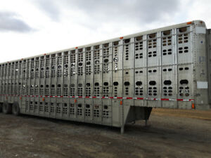Wilson Cattle/Hog Trailer