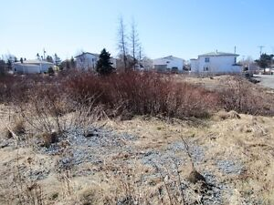 2-10 Hierlihy Place - Bay Roberts, NL - MLS# 1118980 St. John's Newfoundland image 3