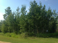 Vacant Acreage in Athabasca County for $22,500