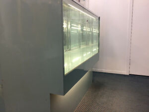 Looking to open a retail store?Fixtures, show case and Manikins
