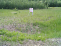 ACREAGE  LOT  -  A  REAL  DEAL